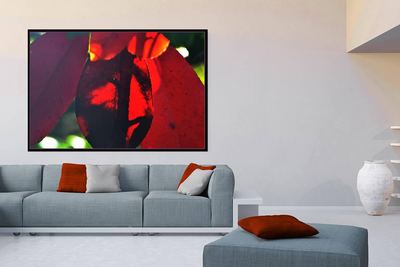 Print Available On Fine Art America Weiße Leinwand An Der Wand Im Wohnzimmer  über Dem Sofa