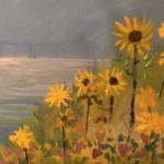 Sunflowers on 30